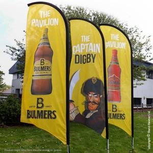 Banner Advertising,advertising banner flags,advertising banners flags,displays unwanted advertisements in banners,airplane advertising banner,banner ads,what is a banner ad